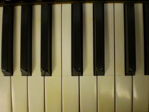 象牙の鍵盤